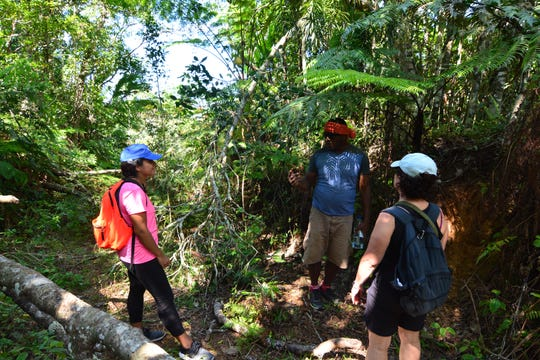 "Learning about local plants from the tour guide along the ""Fiji by Foot"" trail."