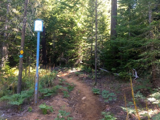 The tall signs along Maxwell Butte Trail are for ski and snowshoe trips in winter.