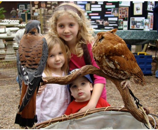 These children were captivated by St. Francis Wildlife's American kestrel and screech owl at Native Nurseries.