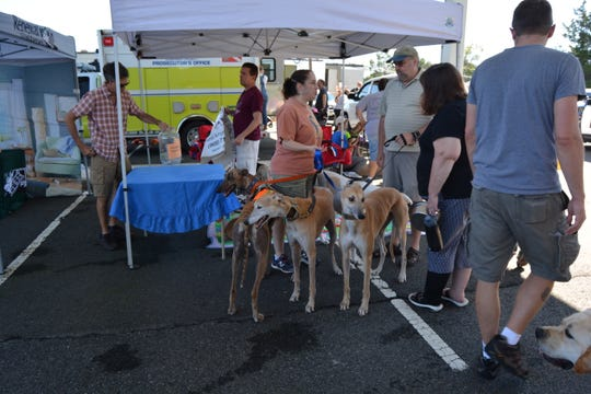 Bridgewater Community Day, featuring Touch-a-Truck and Dog Day, will be held from 11 a.m. to 2 p.m. on Sunday, Sept.15,on the grounds of Somerset County Vo-Tech, 14 Vogt Drive in Bridgewater. The event, co-sponsored by Bridgewater Township and the Shimon and Sara Birnbaum JCC in Bridgewater, will feature family and dog-friendly activities, and local animal shelters and rescue groups will be offering pet adoption. Admission is free.