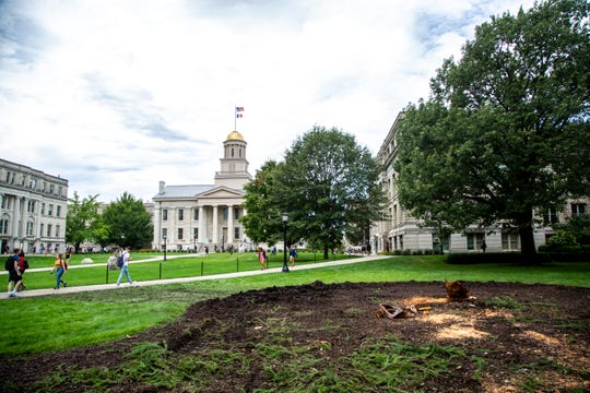 A stump from a large European larch tree and disturbed ground remain after it was removed following winds knocking it over, Tuesday, Sept. 10, 2019, at the Pentacrest in Iowa City, Iowa.