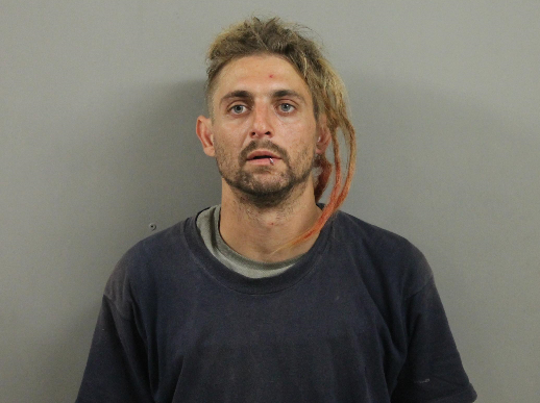Ivan Rulison II is being held in the Ingham County jail, charged with felony larceny from a person stemming from an alleged Sept. 7, 2019 purse snatching.