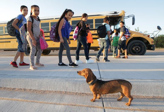 Camilla watches as kids board the bus to school. The dog and the students cross the border from Palomas, Mexico to Columbus, New Mexico. Camila returns to Mexico after the kids have all boarded their busses.