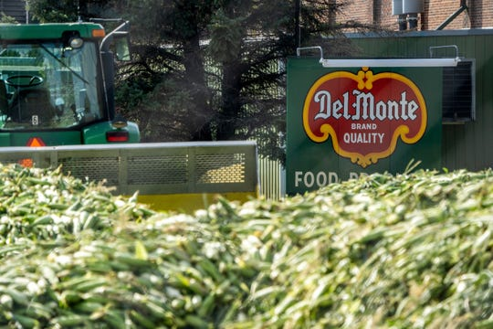 Piles of sweet corn are pushed around by a tractor before being processed at the Del Monte plant in Sleepy Eye, Minn.