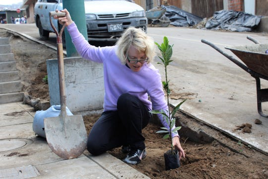 Beside a street that the year before was dirt, Jocelyn Furr brings life to the front of a Methodist church in the Ventanilla district of Callao by planting and avocado tree.