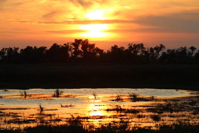 The sun sets over the Magee Marsh Wildlife Area Monday night in Ottawa County. The Friends of Magee Marsh organization is hosting a fall beach cleanup at the wildlife area Saturday morning at 10 a.m.