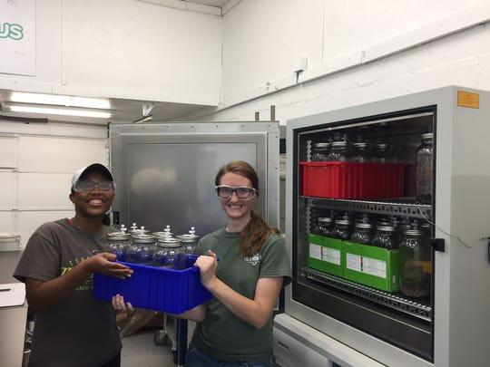 Kellie Malone (left) and Shelley Edwards, Tennessee Tech students and mobius interns, hold jars used to measure how plastic samples biodegrade in soil or compost.