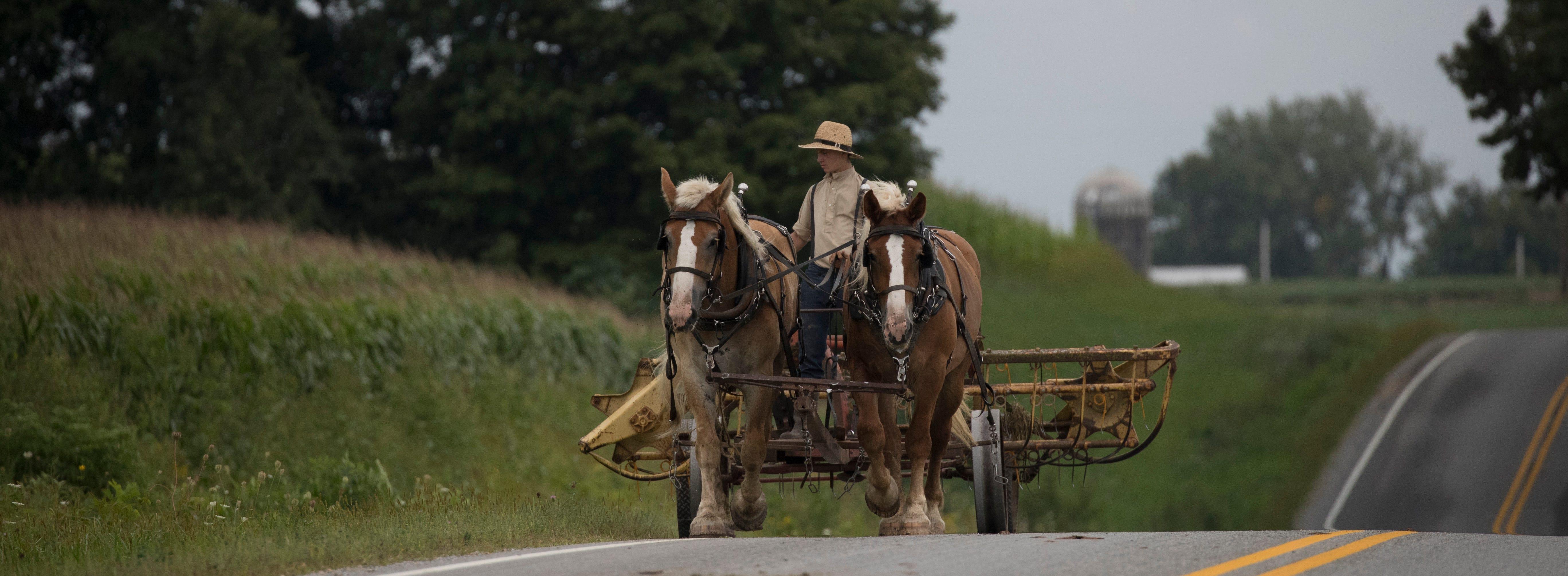 An Amish teen pulls farm machinery down a road in La Farge.