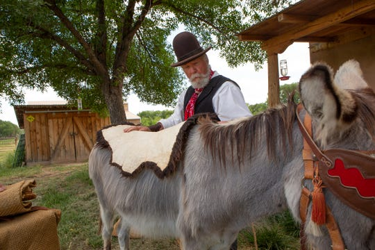 Ron Rundstrom places a hide on the back of a burro before packing cargo on the animal's back.