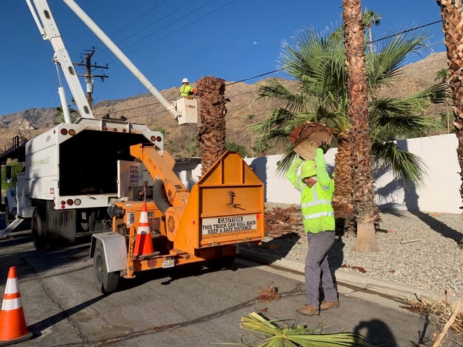 Two workers for Utility Tree Service, Inc., a landscaper specializing in utilities contracts across multiple counties in California and Oregon, removed a palm tree on the former property of Max Factor built in 1956 at 232 Avenida Ortega, known today as The Fontenell.