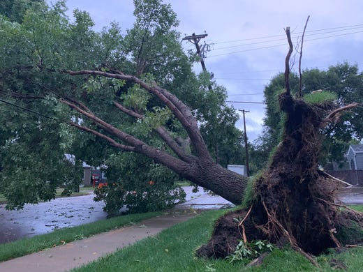 Downed tree near South Grange Ave. and 38th St. caused by overnight storms in Sioux Falls.