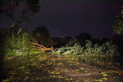 Trees felled by a tornado block St. Andrews Drive on Tuesday night.