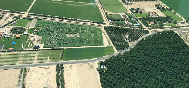 An aerial view of La Union corn maze, which opens Sept. 21.