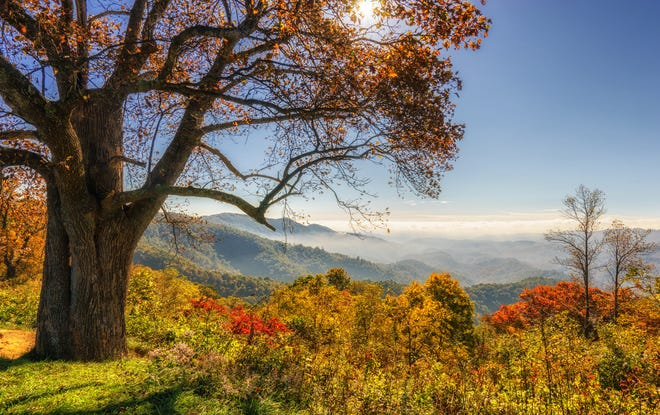 Here's why you should consider this stunning Western North Carolina city for your next home.