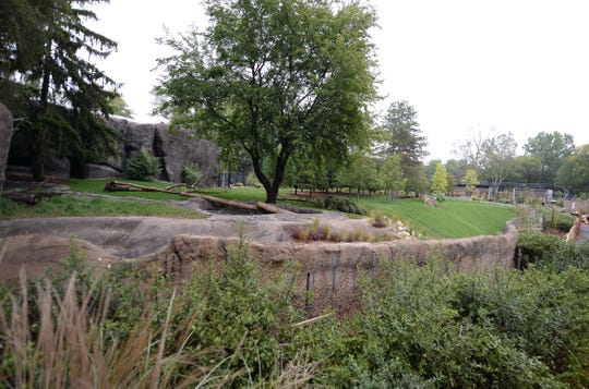 View of the new Devereaux Tiger Forest habitat at the Detroit Zoo.