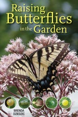"""""""Raising Butterflies in the Garden"""" (Firefly Books) shows the life cycles of 40 different kinds of butterflies and moths and lists the host and nectar plants they rely on."""