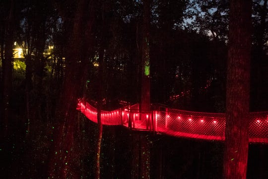 The firefly forest is seen at Anakeesta in Gatlinburg Wednesday, Sept. 11, 2019. They are offering fall activities including a haunted Hallow Mountain graveyard, zombies zip line, and firefly forest.