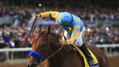 Kentucky Derby 2018 Horses: Meet the Contenders | Courier