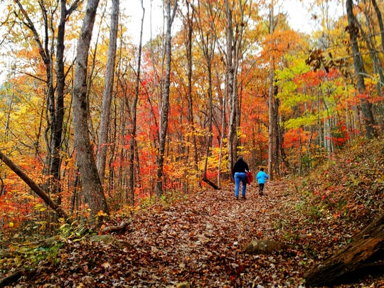 October is a great time to get out on to Tennessee's trails and see some fall foliage.