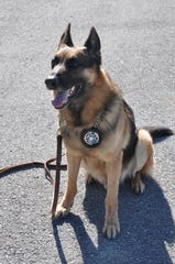 K9 Paco is retiring from the Dickson County Sheriff's Office after 10 years of service.