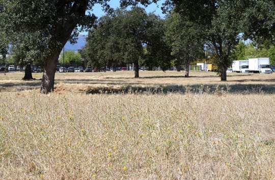 The Hill Country Community Clinic plans to build a wellness campus that includes housing for homeless youth on this vacant lot at 1201 Industrial St. in Redding behind the U.S. Post Office and the Redding Adventist Academy.