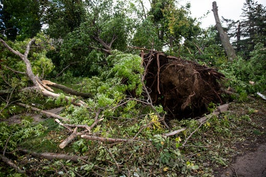 A tree is uprooted on Thursday, Sept. 12. Three tornadoes touched down in Sioux Falls on Tuesday, Sept. 10.