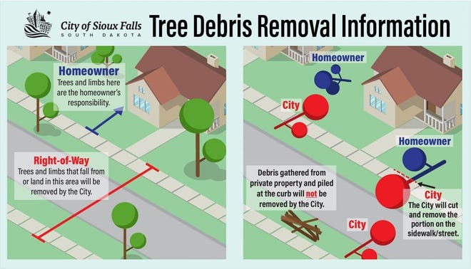 City guidelines on tree debris removal