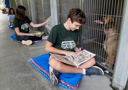 Kevin Taber, 13, and other members of Camp Animal Care, read to dogs at Animal Care in Greenville.