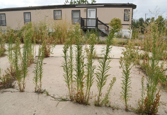 Weeds grow near an abandoned home at the Denver Meadows Mobile Home and RV Park in Aurora on Friday, Aug. 30, 2019. Residents, most of whom have been displaced, tried to buy the park but were unsuccessful. Most of the homes are now abandoned and are slated for demolition as the park closes for possible redevelopment.