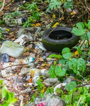 Rainwater collects inside a discarded tire found amongst other illegally disgarded items in the jungle near the Chalan Pago Bridge on Friday, Sept. 13, 2019. The standing water can act as a breeding ground for mosquitoes.