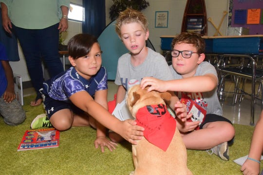 Gus scoots over wagging his nub of a tail to visit Maddox Navarro, Charlie Sides and Ethan Brewer during class at Hardin Valley Elementary School. 9/11/19