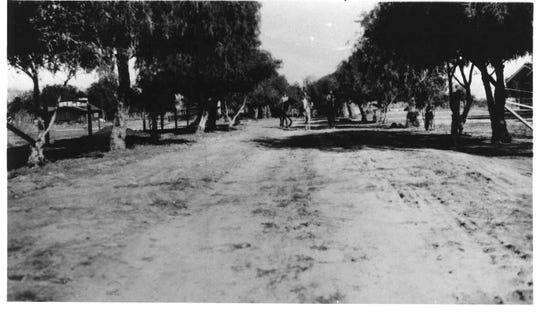 Park Street in the early 1930s, later renamed Arenas.