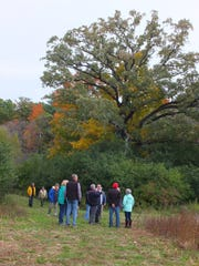 Willow Creek Preserve is 143 acres of undeveloped land in the City of Sheboygan.