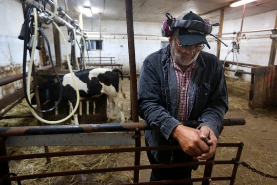 "In this Thursday Aug. 15, 2019 photo, dairy farmer Fred Stone pauses while working in the milking room at his farm in Arundel, Maine. Fred Stone and his wife Laura, whose dairy farm is contaminated by toxic chemicals known collectively as PFAS, so-called ""forever chemicals,"" have high PFAS levels in their blood."