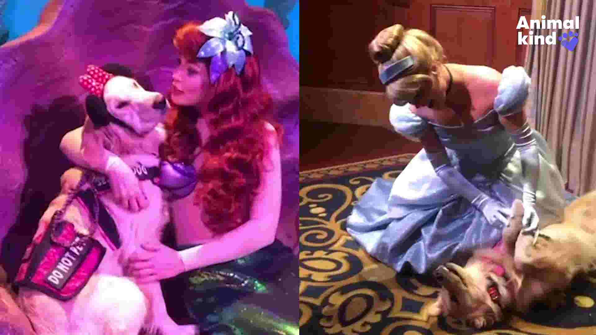 Service dog has the best time at Disney World