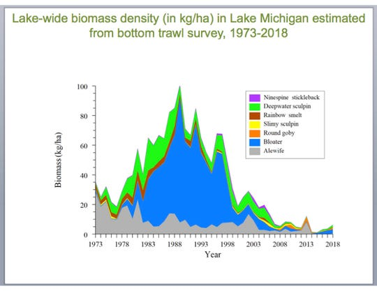 Lake Michigan prey fish such as alewife have largely decreased since the 1980s but have shown an uptick in recent years, according to USGS surveys.