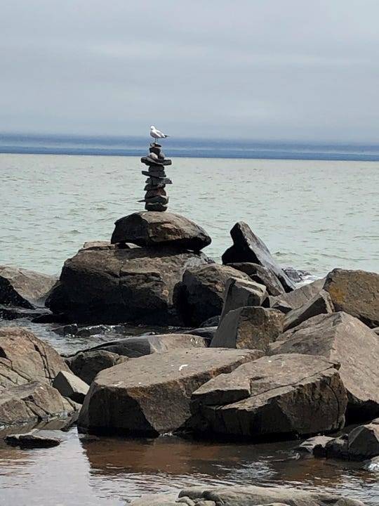 A seagull perches on a  rock cairn left behind by some person or people this summer on the shore of Lake Superior in Duluth.  Creation of these on public lands has sparked a debate nationwide.