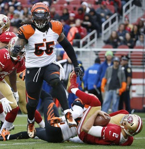 FILE - In this Dec. 20, 2015, file photo, Cincinnati Bengals outside linebacker Vontaze Burfict (55) reacts after sacking San Francisco 49ers quarterback Blaine Gabbert (2) during the first half of an NFL football game in Santa Clara, Calif.  (AP Photo/Tony Avelar, File)