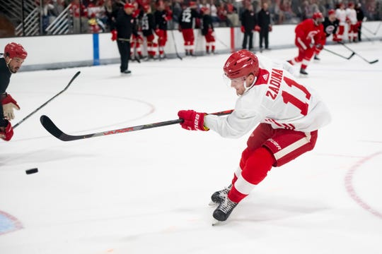 Red Wings forward Filip Zadina spent most of last season in the AHL.