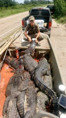 Anni Clavier harvests seven alligators in her lone alligator hunting experience.