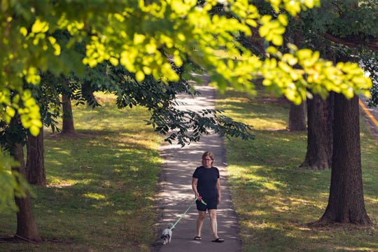 """Deana Case walks her friend's dog, Lady, down the Eastern Parkway tree covered median sidewalk Monday afternoon. """"I just love this walk,"""" Case said. """"I walk myself when I don't have her."""" Sept. 16, 2019"""