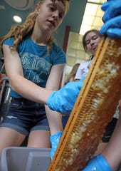 From left, Emma Thorpe, 16, scrapes wax off a frame before extracting honey the team collected from a bee hive at Mamaroneck High School. Members of the Bee team harvest honey after spending two years of maintaining the hives.