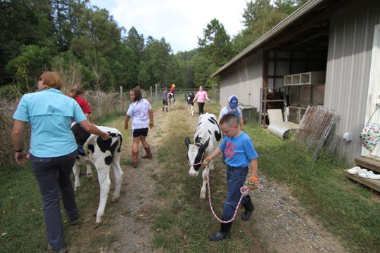 Bryson Little leads his calf around a makeshift paddock in preparation of a livestock show competition scheduled for Sept. 28 at the Madison County Fair.
