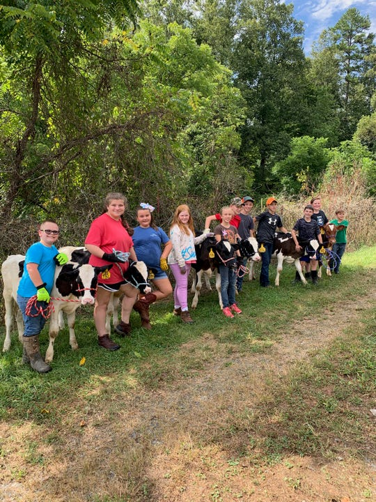 Mason Wallin, Sarah Holder, Reagan Caldwell, Cate Ayers, Davis Metcalf, Justin Ingle, Ramsey Moore, Matthew Crawford, Carter Ray, Stephen Metcalf and Lawson Metcalf lineup alongside the six calves of the Madison 4-H Dairy Program. (Not picture: Bryson Little)