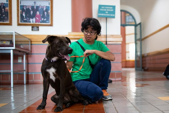 Monica Garcia, a volunteer with Corpus Christi Animal Care Services, visits with a 1-year-old Lab mix in the lobby of City Hall to bring awareness to pet adoption on Tuesday, Sept. 17, 2019.