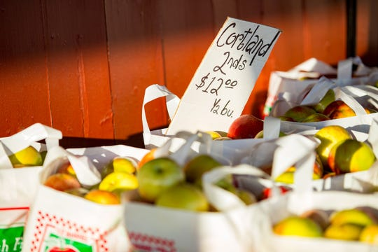 Apples are for sale at Fleming Orchard in Gays Mills.
