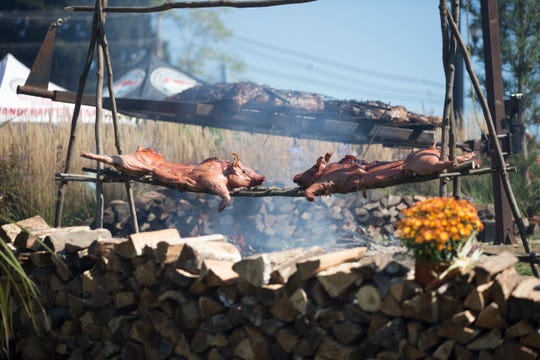 Activities at Mountain Creek's Oktoberfest this Saturday and Sunday in Vernon include contests, food and beer.