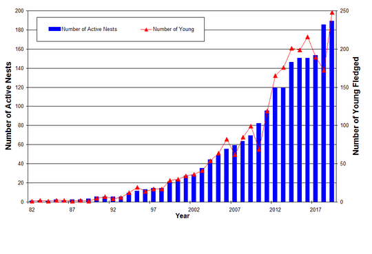The bald eagle nesting population and young in New Jersey from 1982 to 2019.