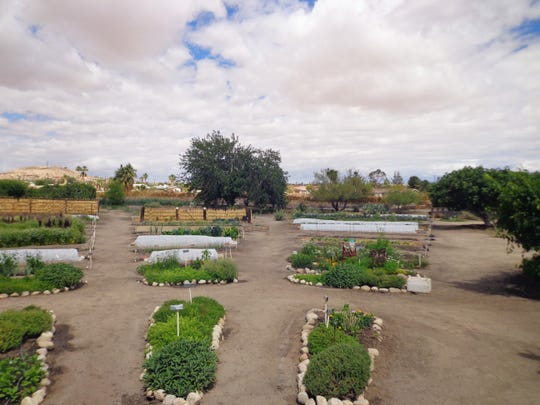 The autumnal equinox marks the start of the desert gardening season.
