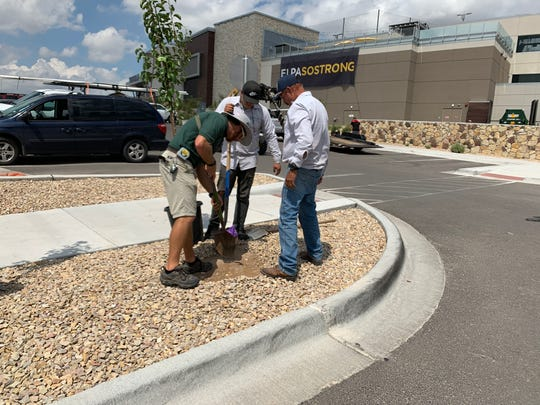 Topgolf El Paso planted 22 trees Monday to honor the memory of the victims of the Aug. 3 Walmart shooting.